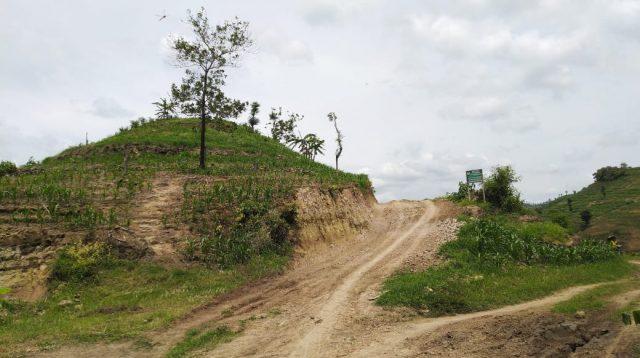 Kondisi kawasan Pegunungan Patiayam yang gundul