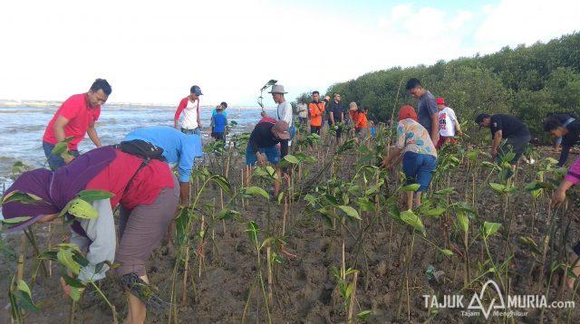 Anggota Mapala Universitas Muria Kudus tengah menanam mangrove di pantai Desa Pohijo, Kecamatan Margoyoso Kabupaten Pati, Minggu (21/4/2019).